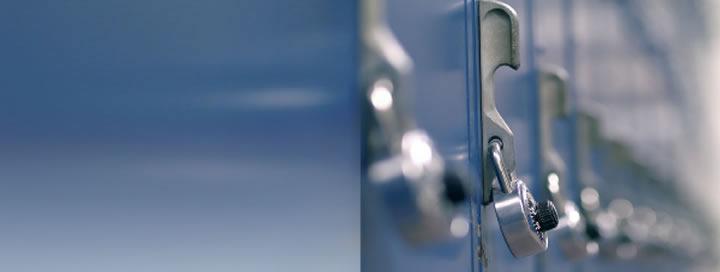 Padlocks and Window Locks